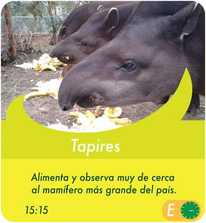 Tapires - Actividades Sábados, domingos y feriados