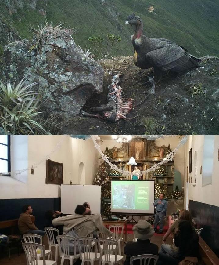 Zoo-Bioparque-Amaru-Cuenca-Amaru participa en reunión del Grupo Cóndor Ecuador