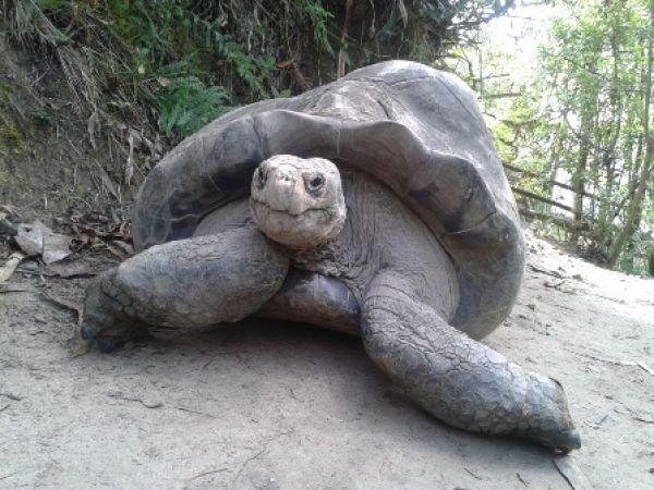 Zoo-Bioparque-Amaru-Cuenca-NUEVA PÁGINA WEB!