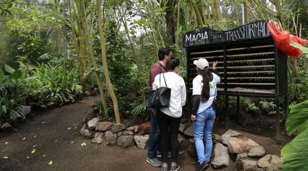 Zoo-Bioparque-Amaru-Cuenca-20 zoológicos en Ecuador volcados a la rehabilitación de víctimas de tráfico ilegal