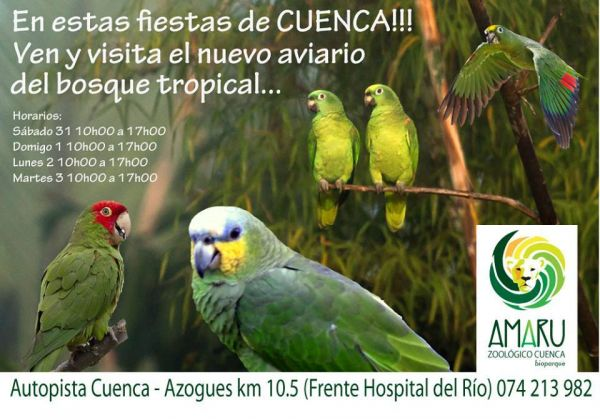 Zoo-Bioparque-Amaru-Cuenca-Ecuador-New tropical immersion aviary opened