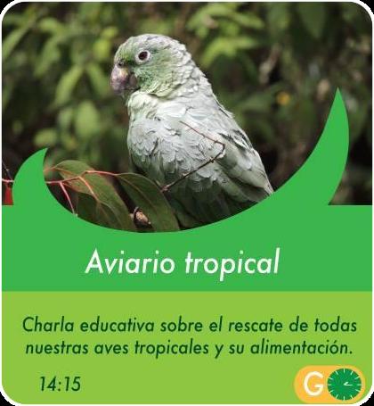 Aviario tropical - Actividades Sábados, domingos y feriados