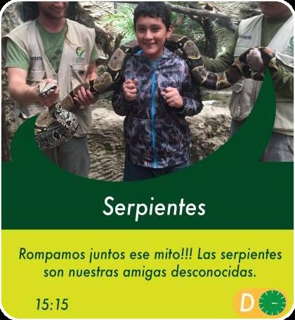 Serpientes - Actividades Sábados, domingos y feriados